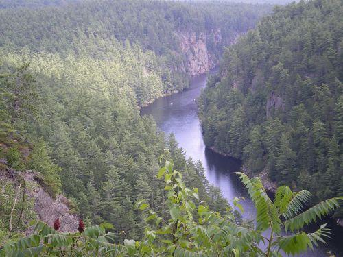 Kanjonas, Barono Kanjonas, Algonkino Parkas, Gorge, Slėnis, Ontarijas, Kanada