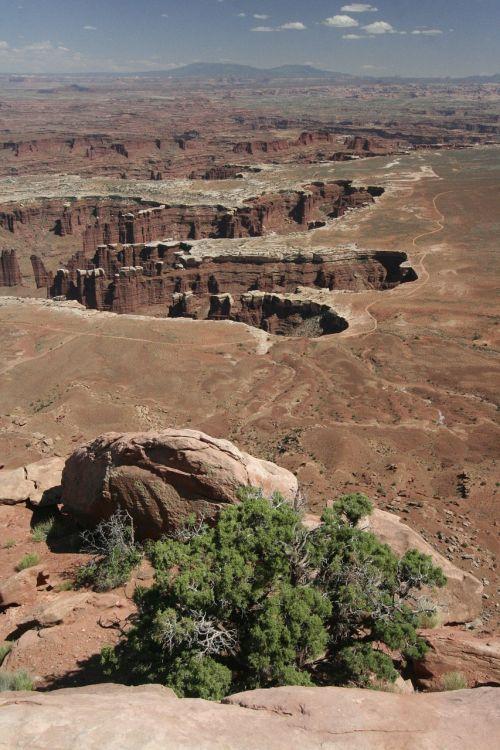kanjonos,slėnis,upė,Colorado,Nacionalinis parkas,Utah