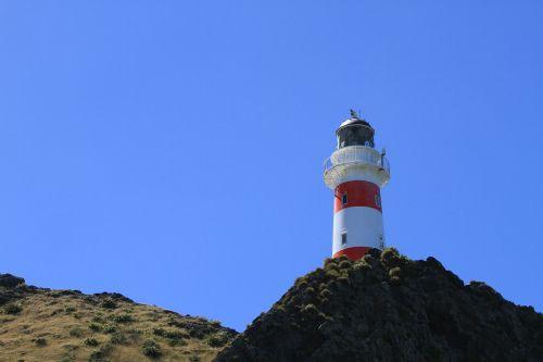 kalno šaulių švyturys,švyturys,Naujoji Zelandija,Wellington,švyturys,šviesa,jūrų saugumas,pakrantė,orientyras