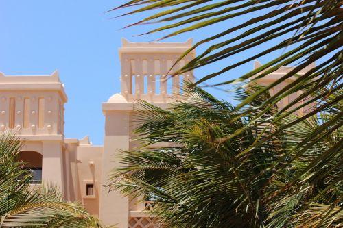 cape verde,palmės,viešbutis