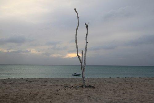 Žaliojo Kyšulio Respublika, Boa Vista, Beach Club, Morabeza, jūra, pobūdį, kraštovaizdis, papludimys, Žaliojo Kyšulio salos, atostogos, dangus, Vienatvė, ir, vienišas