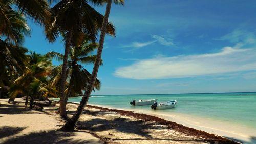 karibai,saona sala,jūra,turkis,vandenynas,banga,papludimys,vanduo,mėlynas,baltas smėlis,smėlis,palmės,boot,laivas,dangus,rojus,nuostabus paplūdimys,smėlio paplūdimys egzotiškas,Pietų jūra,sala,kranto,šventė,svajonių šventė,atogrąžų,kelionė,pietų jūros sala,vienatvė,šiltas,atostogos,tropikai,vasara