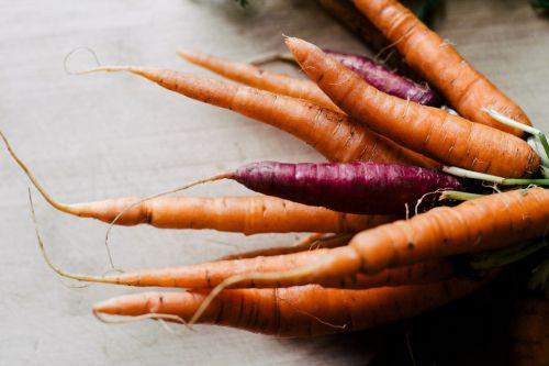 morkos,pasėliai,oranžinė,sveikas