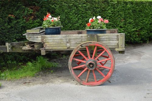 krepšelis,transportas,sodas,vežimas,mediena