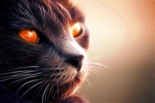 katė,kačių,naminis gyvūnėlis,gyvūnas,gata,kačių veido,atrodo,ūsai,kačių nosis,kačių akys,kačių išvaizda,gyvūnai,fauna,geltonos akys,plaukuotas,nagai,kačiukas,fraktalas,dizainas,mielas,oranžinė,neonas,oranžinės akys