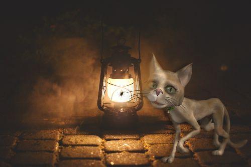 katė,pakaitinė lempa,apšvietimas,nuotaika,gatvės lempa,aliejus,senoji lempa,naktis,šviesa,siena