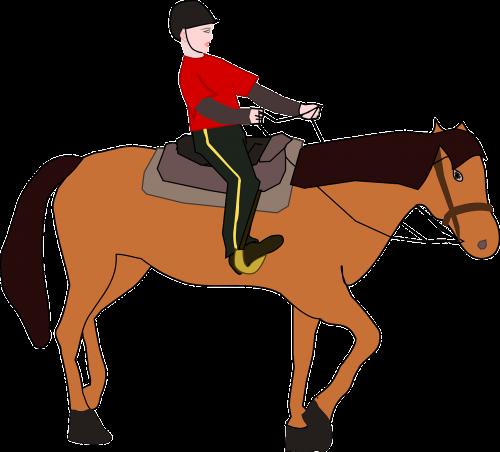 cavalier,raitelis,jodinėjimas,arklys,Jodinėjimas arkliu,pamoka,Jodinėjimas,gaidžiai,nemokama vektorinė grafika