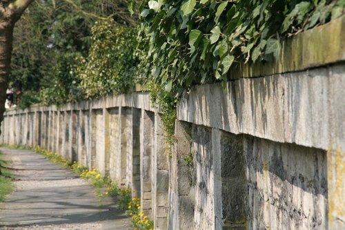 kapinės sienelę, kapinės, Ivy, metai, karjeras akmuo