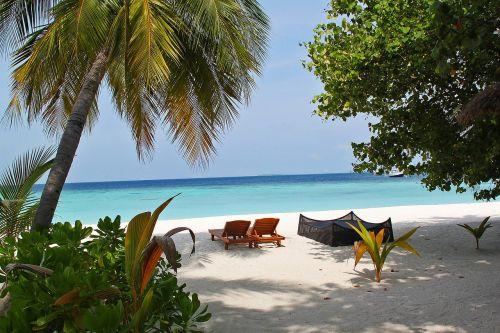 kėdė,atsipalaiduoti,poilsis,medis,laimingas,papludimys,atostogos,atostogos,smėlis,jūra,mėlyna jūra,kurortas,vila,Maldyvai,vanduo,vandenynas,vasara,gamta,atogrąžų,kelionė,kranto,mėlynas,dangus,saulė,rojus,banga,kraštovaizdis,jūros dugnas,gražus,turizmas,pakrantė,šventė,Krantas,sala,saulėtas,saulės šviesa,lauke,atsipalaidavimas,saulės šviesa,saulėlydis,vaizdingas,pietų jūra,pietų jūra