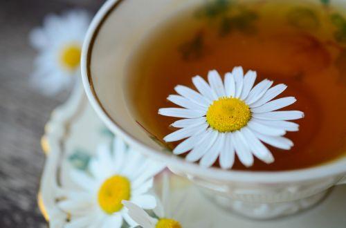 ramunė,ramunėlių arbata,tee,medicina,natūropatas,augalas,vaistinis augalas,vaistinis augalas,vasara,vaistažolių medicina,vaistiniai augalai,taurė,Uždaryti,sveikas,Iš arti,makro,gamta