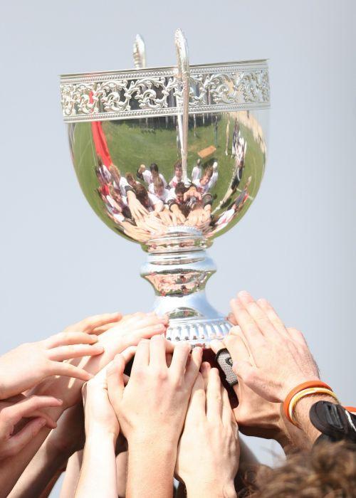 čempionai,apdovanojimas,trofėjus,taurė,pergalė,sėkmė,nugalėtojas,pasiekimas,premija,Sportas,blizgantis,triumfas,pagarba,metalinis,šventė,pasiekimas,turnyras,čempionatas,žaidimas