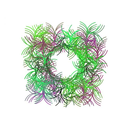 rėmas, žalias, chaotiškas, piešimas, simetriškas, balta, fonas, chaotiškas rėmas