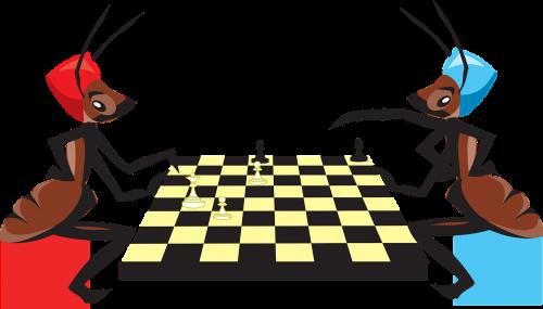 Šachmatai,žaidimas,žaisti,sėdi,vabzdžiai,skruzdėlės,žaisti,strategija,šachmatų lenta,gabalas,nemokama vektorinė grafika