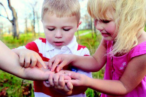 vaikai,berniukas,mergaitė,Boružė,klaida,vabzdys,tyrinėti,gamta,lauke,mokymasis,mokytis,prisiliesti,švietimas,atrodo,šeima,suprasti,išnagrinėti,aplinka