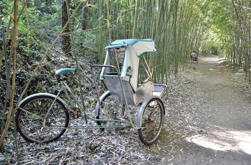 Kinija,stumia stumia,transportas,zen,klientų aptarnavimas,bambukas,trasa,transporto trasa,kelionė,miškas