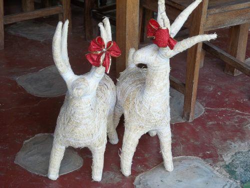 Kalėdos,šiaurės elniai,šventė,apdaila,Kosta Rika,xmas,dekoratyvinis,Kalėdų puošimas