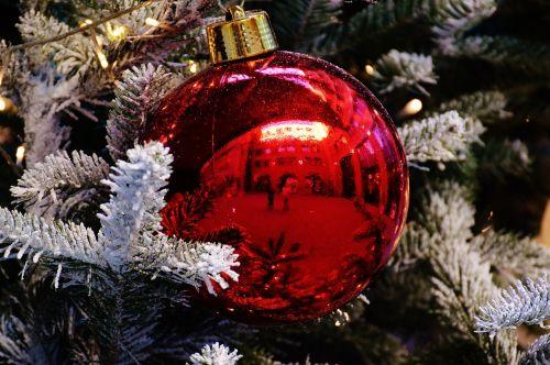 Kalėdos,Kalėdiniai kamuoliai,christbaumkugeln,deko,apdaila,Adventas,šventiniai dekoracijos,Kalėdiniai dekoracijos,rutuliai,raudona,Kalėdų eglutė,medžio dekoracijos,Kalėdų puošimas,linksmų Kalėdų,weihnachtsbaumschmuck,spindesys,xmas