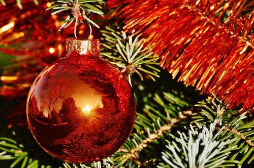 Kalėdos,Kalėdiniai kamuoliai,christbaumkugeln,deko,apdaila,Adventas,šventiniai dekoracijos,Kalėdiniai dekoracijos,rutuliai,oranžinė,Kalėdų eglutė,medžio dekoracijos,Kalėdų puošimas,linksmų Kalėdų,weihnachtsbaumschmuck,spindesys,xmas