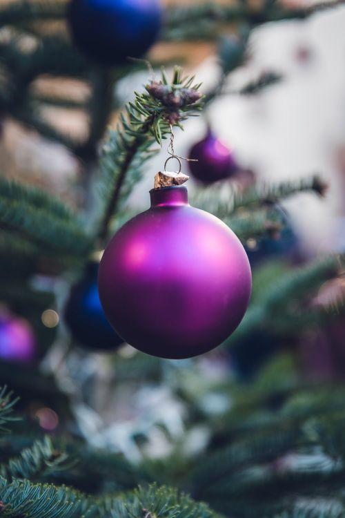 Kalėdos,rutulys,šventė,vakarėlis,šventė,medis,violetinė,žalias