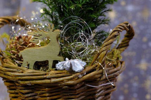 Kalėdos,Kalėdų laikas,Adventas,šiaurės elniai,deko,apdaila,fonas,žemėlapis,Kalėdinis atvirukas,atvirukas,atvirukas