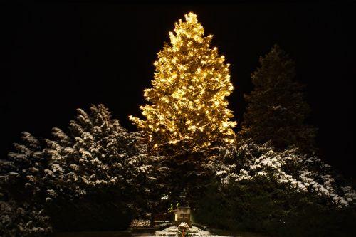 Kalėdos,weihnachtsbaumschmuck,žalias,Glaskugeln,sniegas,apšvietimas,medis,tamsi,naktis,šviesa,Kalėdų papuošalai,spindesys,elektrinė kalėdinė eglutė,lichterkette
