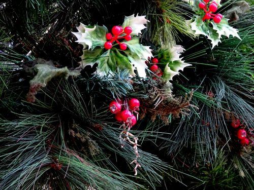Kalėdos, Holly, santa, Claus, medis, medžiai, xmas, šventė, atostogos, linksmas, laimingas, pateikti, dovanos, Kalėdų šventė