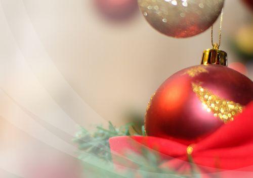 Kalėdų eglutė,Kalėdos,Kalėdų eglučių apdaila,carol,Kalėdiniai dekoracijos,linksmų švenčių,medis,atostogos,norai,Kalėdų eglutė,Kalėdų kepurės