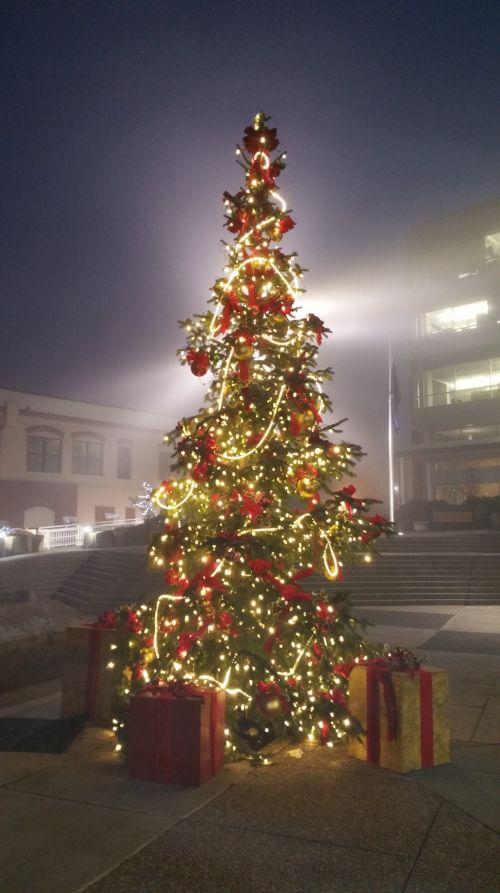 Kalėdos, medis, atostogos, Kalėdų eglutė apšviesta