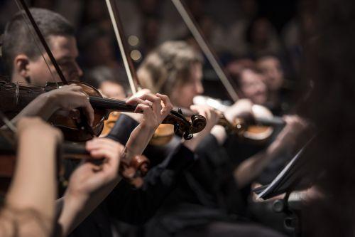 Klasikinė muzika,koncertas,makro,muzika,muzikos instrumentai,muzikantai,orkestras,spektaklis,styginiai instrumentai,smuikai