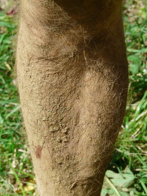 molio duonos trupiniai,purvo vienetas,kojos,priemolio,purvinas,džiovintas,Wade,blauzdos