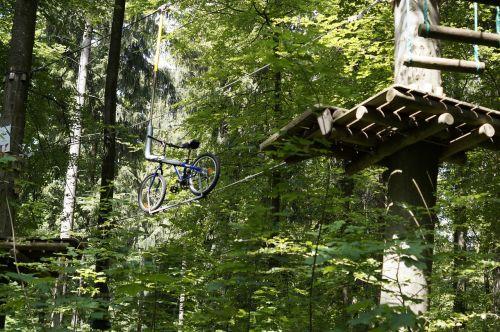 lipti,aukštas lynų kursas,laipiojimo miškas,laipiojimo sodas,drąsos,drąsos testas,drąsus,miškas,parcours,pabūti,platforma,stotis,aukštas,viršuje,dviratis