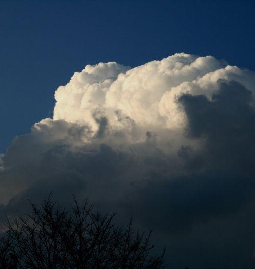 debesis,didelis,cumulus,billowing,balta,šešėlis,šepetys