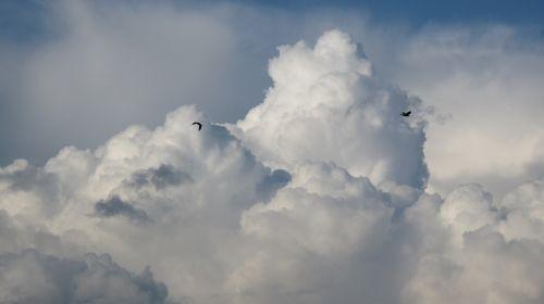 debesys,audra,tamsūs debesys,gamta,lietus,po audros,kraštovaizdis,prieš audrą,saulė,tekstūra,vėjas,debesų danga,audros debesys,dangus,vaizdas,fonas,aura,mėlynas,kruša,žaibas