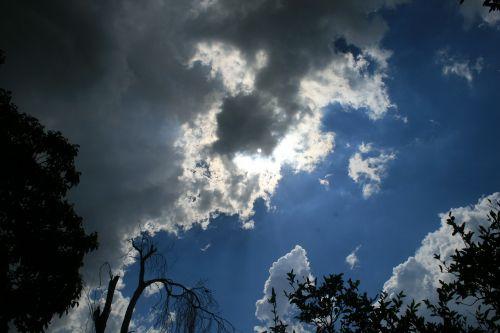 debesys,rinkimas,uždarymas,audra,tamsi,šviesūs kraštai,šviesus,mėlynas dangus,medžiai