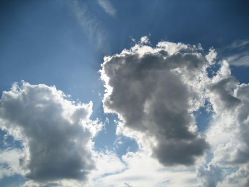 debesys,mėlynas,dangus,oras,cumulus