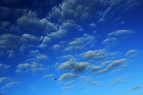 debesys, debesys & nbsp, aukščiau & nbsp, dangus, debesuota & nbsp, dangaus, mėlynas & nbsp, dangus, gamta, dangus, Debesuota, tapetai, fonas, bangų & nbsp, debesys, diskeliai & nbsp, debesys, patinka & nbsp, medvilnės & nbsp, debesys, debesys 84