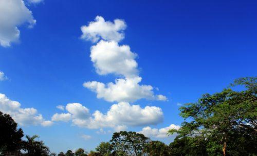 debesys, debesys & nbsp, aukščiau & nbsp, dangus, debesuota & nbsp, dangaus, mėlynas & nbsp, dangus, gamta, dangus, Debesuota, tapetai, fonas, bangų & nbsp, debesys, diskeliai & nbsp, debesys, patinka & nbsp, medvilnės & nbsp, debesys, debesys 97