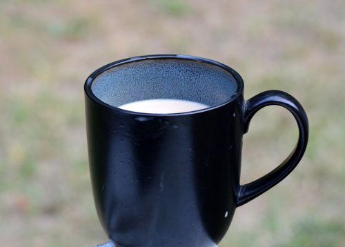 kava,taurė,puodelis kavos,gerti,kavos puodelis,espresso,kofeinas,karštas,gėrimas,juoda,pusryčiai,kavinė,puodelis,balta,pertrauka,šviežias,rytas,ruda,java,gurmanams,maistas,aromatas,lėkštė,pupos,tamsi,ispanų,skystas,kavos pupelė,atsipalaidavimas,kavos puodelis izoliuoti,šiltas,užvirinti,paruošta