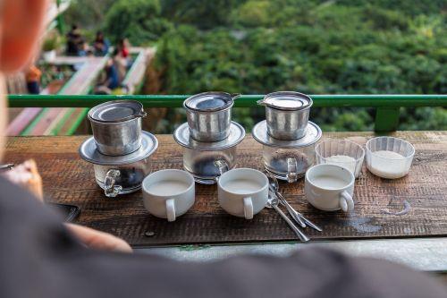 kava, Vietnamas, da lat, kavos plantacijos, gerti, Vietnamas kavos, kavos pupelės, skrudinta, kofeinas, aromatas, gėrimai, pupos, be honoraro mokesčio
