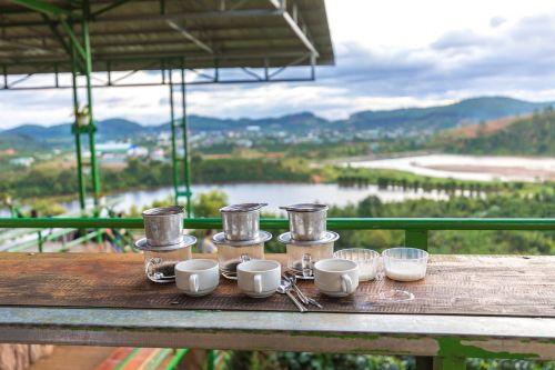 kava, Vietnamas, da lat, kavos plantacijos, gerti, Vietnamas kavos, kavos pupelės, skrudinta, kofeinas, aromatas, gėrimai, pupos, Expresso, gamta, vandenys, mediena, dangus, be honoraro mokesčio