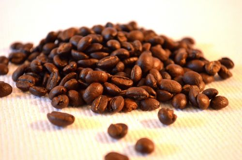 kava,pupos,etiopija