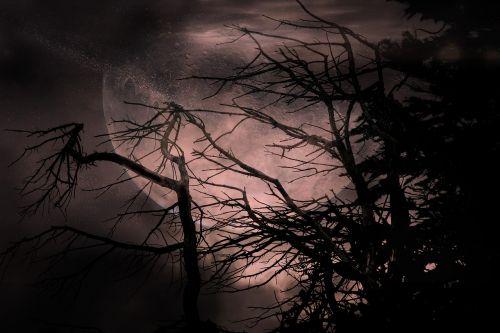 koliažas,montavimas,mėnulis,mistinis,fantazija,pasakos,atmosfera,magija,foto montavimas,naktis,creepy,šaltas,niūrus,sirrealis,tamsa,keista,gespenstig