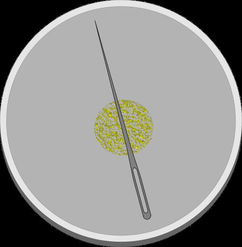 kompasas,Pasidaryk pats,magnetizuotas,adata,nemokama vektorinė grafika