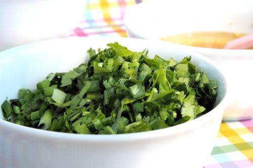 koriandras,prieskoniai,maistas,maisto produktas,žalias,daržovių