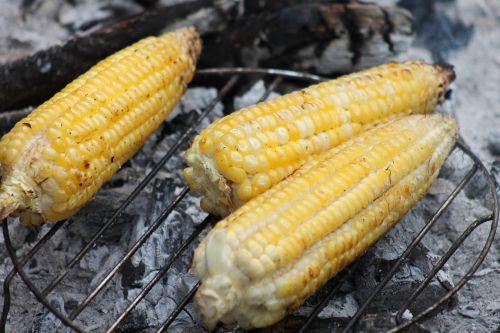 kukurūzai,cob,kepsnys,maistas,daržovės