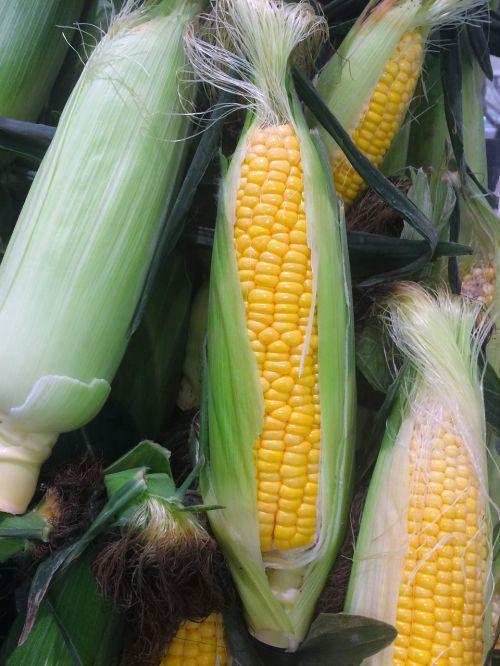 kukurūzai,daržovės,geltona,seiyu ltd,gyvenimas,prekybos centras,vaisiai ir daržovės,departamentas,Heisei-cho,Yokosuka,Japonija
