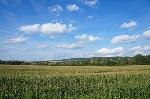 Šalis,slovakija,laukas,gamta,vasara,dangus,dangus