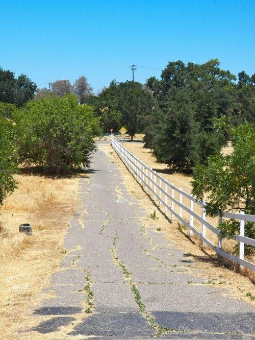 kaimo keliukas,senas kelias,tvora,kaimas,gamta,natūralus,kelias,siauras kelias,kelias