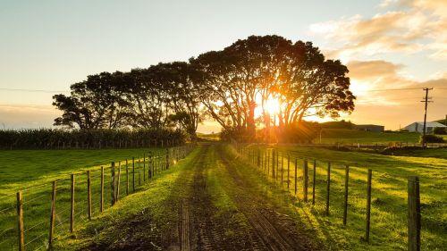 kaimas,saulėlydis,kraštovaizdis,vasara,laukas,ūkis,saulėlydis,saulės šviesa,lauke,oranžinė,grazus krastovaizdis,vasaros kraštovaizdis,peizažai,gražus,ūkio kraštovaizdis,šviesa,žemės ūkio paskirties žemė,žalias,Šalis,kelias,purvo kelias