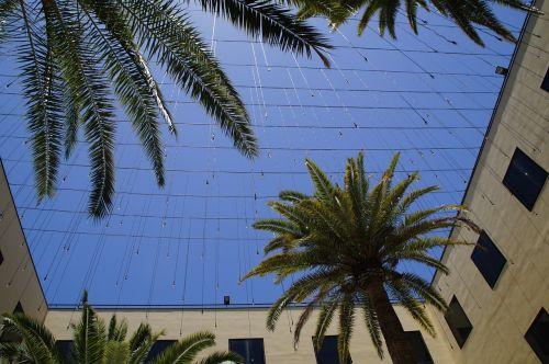 kiemas,dangus,šventė,pastatas,Viduržemio jūros,palmės,vasara,vaizdas,viršuje,karoliukai,lašelinė,lempa,apšvietimas,žibintai,perspektyva,priklausyti,lichterkette